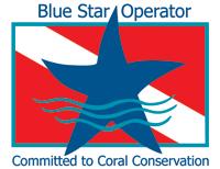 Blue Star Operator