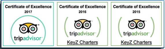 best boat tours Islamorada Florida Keys tripadvisor
